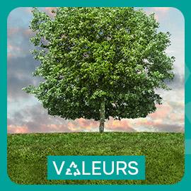 Valeurs - KEDGE